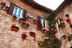 Assisi medieval building in Umbria- Italy. Assisi medieval building with plants and flowers in Umbria - Italy Royalty Free Stock Photography