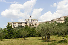 Assisi, old buildings and olive trees Stock Photos