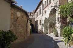 Assisi old street royalty free stock photography