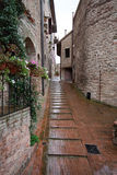 Assisi (Umbria) Royalty Free Stock Image