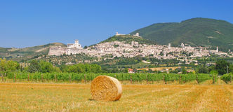 Assisi in Umbria Stock Image