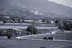 Assisi - Umbria - Italy. Umbrian farm land in front of Assisi, Umbria - Italy on the side of the hill. Duotone Royalty Free Stock Photography