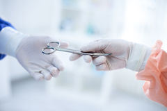 Assistant adds instruments during surgery Royalty Free Stock Photography