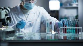 Assistente de laboratório médico que toma o material genético para o exame na paternidade Fotos de Stock Royalty Free