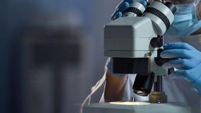 Assistente di laboratorio che ricerca i batteri recentemente cresciuti sotto il microscopio, scienza Fotografia Stock Libera da Diritti