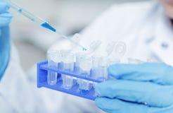 Assistente di laboratorio in di qualità dei prodotti alimentari Analisi della coltura cellulare per provare seme geneticamente mo Immagine Stock Libera da Diritti