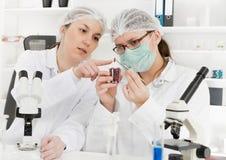 Assistente di laboratorio nel laboratorio di qualità dei prodotti alimentari Fotografie Stock Libere da Diritti