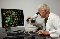 Assistente tecnico genetico Fotografia Stock Libera da Diritti