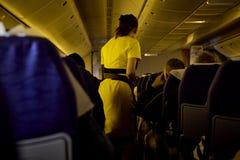 assistentes do voo, aeromoça de ar imagem de stock