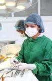 assistentsjuksköterska royaltyfri fotografi