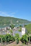 Assmannshausen Rhine flod, Tyskland royaltyfri foto