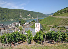 Assmannshausen,Rhine River,Germany Royalty Free Stock Images