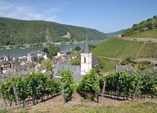 Assmannshausen,Rhine River,Germany royalty free stock images
