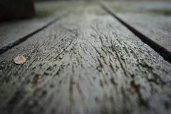 Assoalho de madeira velho Fotos de Stock Royalty Free