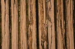 Assoalho de madeira velho dos logs com o MOS da casa rural Fotografia de Stock Royalty Free