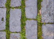Assoalho de pedra Foto de Stock