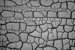 Assoalho seco em Epecuen, Buenos Aires Imagens de Stock