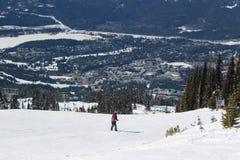 Assobiador - Canadá foto de stock royalty free