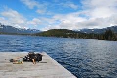 Assobiador da pesca de mosca BC Fotos de Stock