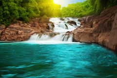Associação da cachoeira Fotos de Stock