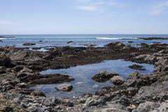 Associação da maré Fotos de Stock