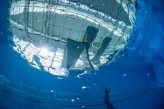 Associação de mergulho Foto de Stock Royalty Free