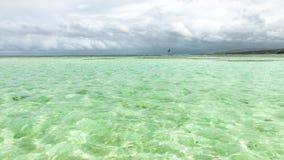 Associação de nylon na profundidade rasa da atração turística de Tobago do coral claro da coberta da água do mar e da vista panor foto de stock royalty free