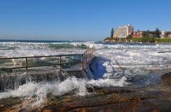 Associação do oceano Foto de Stock Royalty Free