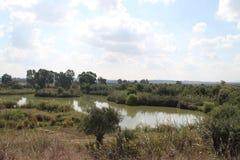 Associação e Flora Landscape foto de stock