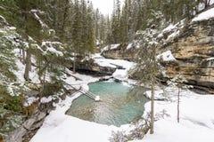 Associação nevado da cachoeira imagens de stock