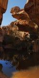 Associação pequena na parte inferior do desfiladeiro do deserto Imagem de Stock Royalty Free
