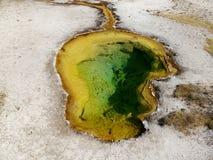 Associação quente do geyser na área fiel velha do parque nacional de Yellowstone Imagens de Stock