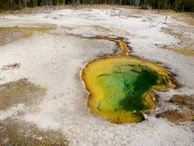 Associação quente do geyser na área fiel velha do parque nacional de Yellowstone Fotografia de Stock Royalty Free