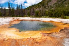 Associação térmica quente no parque nacional de Yellowstone fotos de stock royalty free
