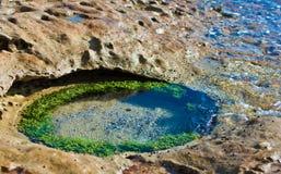 Associação tropical da rocha Fotografia de Stock