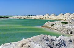 Associação verde de sal em Rio Lagartos fotografia de stock royalty free