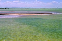 Associação verde de sal em Rio Lagartos imagens de stock