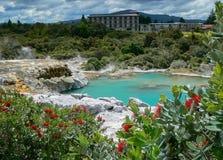 Associação vulcânica de Bluey no parque geotérmica de Te Puia, Rotorua, Nova Zelândia foto de stock royalty free