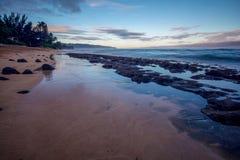 Associações da maré na praia na costa norte, Oahu imagem de stock