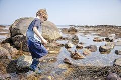 Associações de exploração da maré do menino na costa de New Hampshire imagens de stock