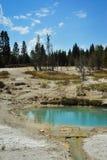 Associações minerais em Yellowstone Fotografia de Stock