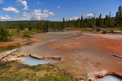 Associações térmicas no parque nacional de Yellowstone, EUA com os montes arborizados no fundo fotografia de stock
