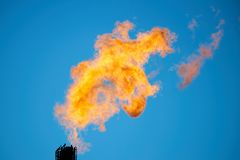 Combustion of associated petroleum gas. Stock Photography