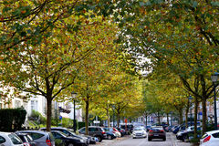 Associated to Moliere. Street Moliere on the autumn times in brussels Stock Photography