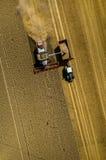 Associazione che lavora al giacimento di grano Immagine Stock Libera da Diritti