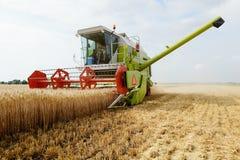 Associazione della mietitrice del grano che lavora nel campo Immagine Stock Libera da Diritti