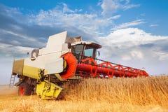 Associazione-mietitrice che raccoglie il grano del grano Fotografia Stock