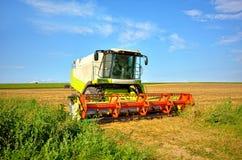 Associazione moderna su un giacimento di grano Immagine Stock Libera da Diritti