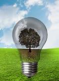 Assorbimento di corrente di energia e natura fotografia stock
