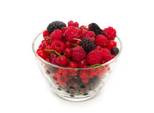 Assort of fresh berries Stock Photo